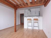 Obývací pokoj s kuchyňským koutem (Pronájem bytu 1+kk v osobním vlastnictví 31 m², Kolín)