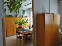 Prodej komerčního objektu 10587 m², Chvaletice