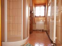 Hlavní budova-jedna z koupelen (Prodej penzionu 700 m², Žabonosy)