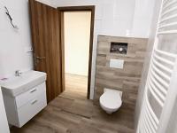 koupelna (Prodej bytu 2+kk v osobním vlastnictví 50 m², Velim)