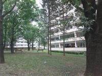 Zeleň za domem (Prodej bytu 3+kk v osobním vlastnictví 71 m², Kolín)