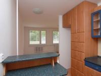Kuchyně a obývací pokoj (Prodej bytu 3+kk v osobním vlastnictví 71 m², Kolín)