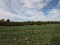 pohled na pozemek - Prodej pozemku 2093 m², Říčany