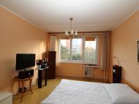 pohled od vstupu (Prodej bytu 1+kk v osobním vlastnictví 29 m², Praha 4 - Modřany)