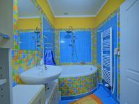 Pronájem 1+1 Čáslav, koupelna (Pronájem bytu 1+1 v osobním vlastnictví 43 m², Čáslav)