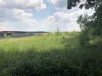 Prodej pozemku 1092 m², Dolní Ředice