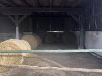 Prodej zemědělského objektu 15000 m², Potštejn