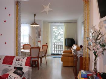 Prodej bytu 1+kk v osobním vlastnictví, 45 m2, Železná Ruda
