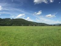 Prodej pozemku 26804 m², Janová