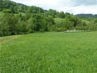 Prodej pozemku 5923 m², Huslenky