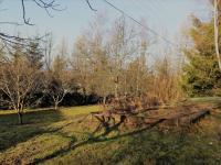 Ovocný sad (Prodej chaty / chalupy 160 m², Trojanovice)