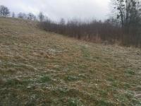 Prodej pozemku 2000 m², Velká Lhota