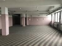 Prodej komerčního objektu 4000 m², Ostrava