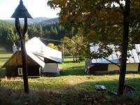 Pohled od lesa (Prodej chaty / chalupy 134 m², Staré Hamry)