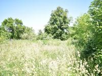 Prodej pozemku 2140 m², Kunovice