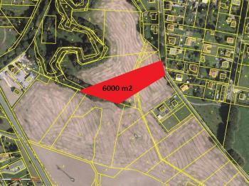 pozice na mapě - Prodej pozemku 6000 m², Paskov