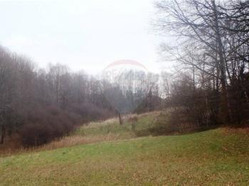 Prodej pozemku 4302 m², Rychvald