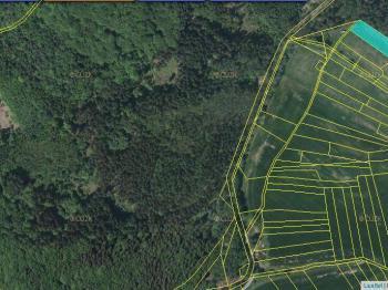 Prodej pozemku 2679 m², Černé Voděrady