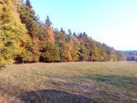 Prodej pozemku 9700 m², Černé Voděrady