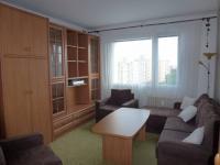 Pronájem bytu 1+1 v osobním vlastnictví 46 m², Plzeň