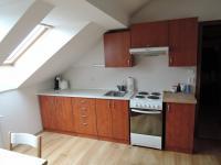 Pronájem bytu 1+1 v osobním vlastnictví 41 m², Plzeň