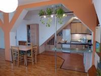 Pronájem bytu 2+kk v osobním vlastnictví 55 m², Plzeň