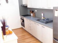 Pronájem bytu 1+kk v osobním vlastnictví 63 m², Plzeň
