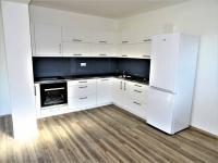 Pronájem domu v osobním vlastnictví 150 m², Zruč-Senec