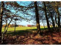 Prodej pozemku 2681 m², Křtiny