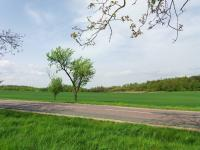 okolí (Prodej pozemku 743 m², Hlína)