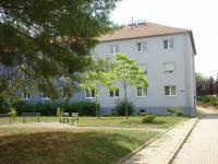Pronájem bytu 1+1 v osobním vlastnictví 29 m², Brno
