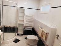 Koupelna - Prodej bytu 4+kk v osobním vlastnictví 138 m², Brno