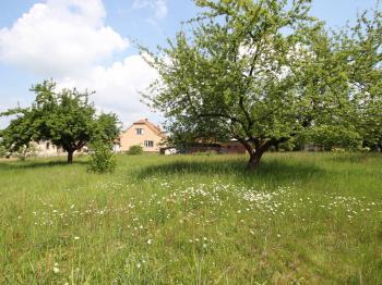 Prodej pozemku 2350 m², Fryšava pod Žákovou horou