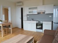 Kuchyňský kout - Pronájem bytu 2+kk v osobním vlastnictví 47 m², Brno