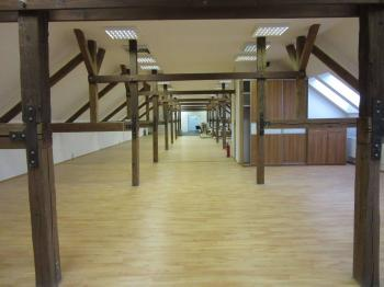 Pronájem kancelářských prostor 250 m², Hodonín