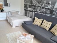 Obývací pokoj i ložnice - Prodej bytu 1+kk v osobním vlastnictví 30 m², Brno