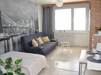 Obytný prostor - Prodej bytu 1+kk v osobním vlastnictví 30 m², Brno