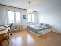 Pokoj s kuchyňským koutem - Prodej bytu 1+kk v družstevním vlastnictví 32 m², Brno