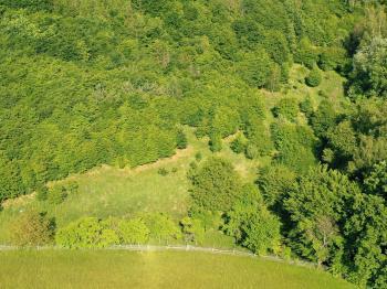 Prodej pozemku, 14478 m2, Vranov