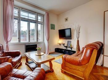 Prodej bytu 1+1 v osobním vlastnictví, 48 m2, Brno