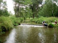 Ráj vodáků (Prodej pozemku 9667 m², Pertoltice pod Ralskem)
