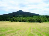 Pohled přes pole  (Prodej pozemku 9667 m², Pertoltice pod Ralskem)