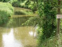 Pstruhová voda (Prodej pozemku 9667 m², Pertoltice pod Ralskem)