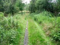 příjezdová cesta (Prodej pozemku 9667 m², Pertoltice pod Ralskem)