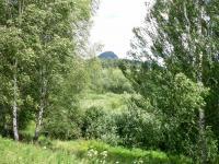 Pohled přes pozemek na hrad Ralsko (Prodej pozemku 9667 m², Pertoltice pod Ralskem)