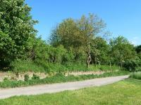 Prodej pozemku 7400 m², Cerhenice