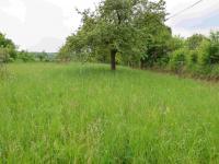 Prodej pozemku 2949 m², Košík