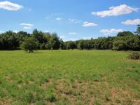 Pronájem pozemku 12757 m², Nymburk