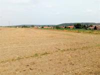 Prodej pozemku, 4900 m2, Všejany