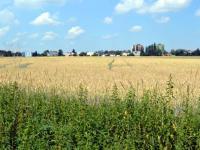 Prodej pozemku 8991 m², Hlučín